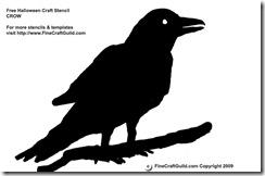 Healing Power of Raven